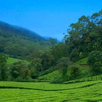 HILL STATION OF KERALA