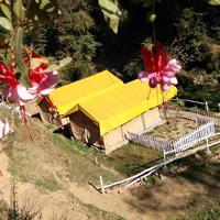 Camping In Shimla HP