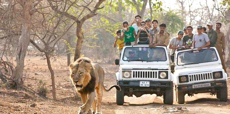 Book Delhi - Nainital - Jim Corbett - Kausani - Agra Tour ...