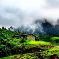 Cochin - Munnar - Alleppey - Thekkady Tour