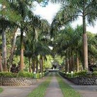 Short Escape to Kaziranga Tour