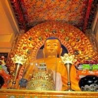 Pathankot - Palampur - Dharamshala Tour Himachal