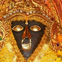 Amritsar - Char Devi - Dharamshal - Mcleodganj - Himachal Tour