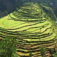 Serene Uttarakhand Tour