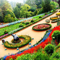 Bangalore - Mysore - Ooty Honeymoon Holiday Tour