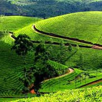 Munnar Luxury Package