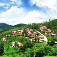 Mysore - Ooty Package