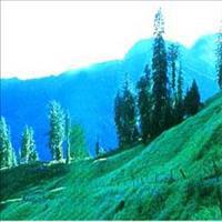 Amritsar - Dalhousie - Dharamsala - Palampur - Manali - Kullu - Manikaran - Shimla - Chandigarh Tour