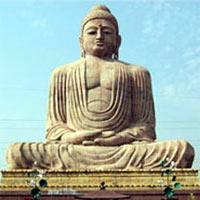 Buddha Tour
