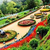 South India Hill Stations Tour
