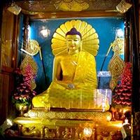Lord Buddha Parikrima Tours