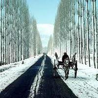 Scenic Kashmir Tour