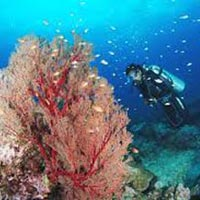 Andaman Tour 4 Days