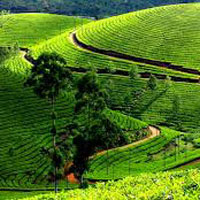 EX. Bangalore Package: 8Nts / 9Days By Bus
