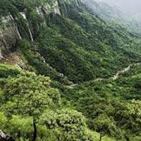 Kaziranga National Park 5 Nights / 6Days Package