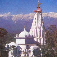 Full Day Excursion To Kangra Valley Tour