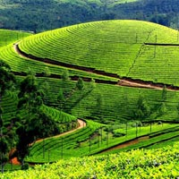 Kerala Backwater Tour with Munnar & Kovalam