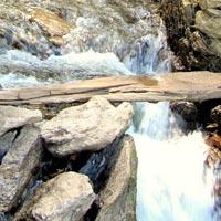 Tribal Himachal Tour