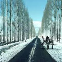 Kashmir Budget Tour Packages