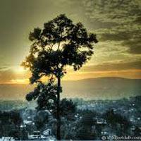 Guwahati - Kaziranga - Shillong - Cherrapunji Tour