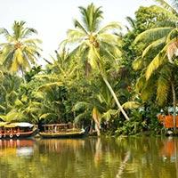 Kerala Honeymoon Tours, Munnar Honeymoon Tours