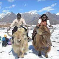 SHIMLA-MANALI TOUR BY CAR