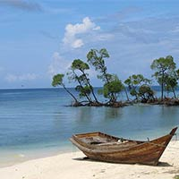 Enjoy In Andaman Tour