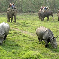 Pokhara - Kathmandu Chitwan With Manokamna Tour