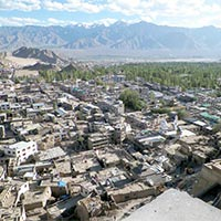Leh City