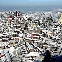 Shimla Special Tour