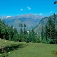Delhi-Shimla-Manali-Rohtang Pass Tour