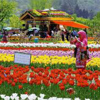 Kashmir - The Paradise Tour package