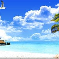 Klondike - Mauritius Tour Package
