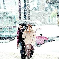 Manali - Honeymoon Package