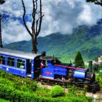 Darjeeling Delight Package