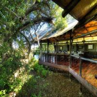 Kanana - Okuti Wildlife safari tour