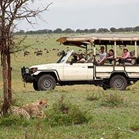 Mara Bushtops Camp Tour