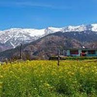 Best of Himachal Tour
