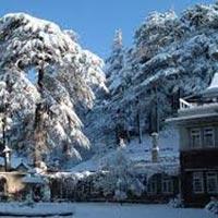 Delhi Shimla Manali Chandigarh Tour