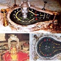 Agra - Nashik Tour