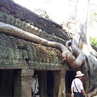 Phnom Pehn Tours