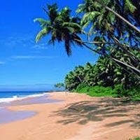 Amazing Goa Tour Package