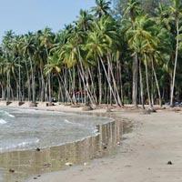 Mangroove Andaman (LTC) Package