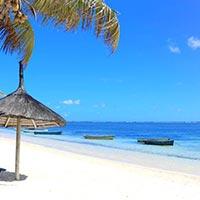 Divinity of Mauritius Tour