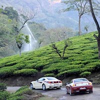 Ooty & Cochin Tour Package