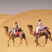Desert Camel Safari Tour