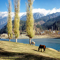 Kashmir Vaishnovdevi Tour