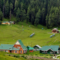 Exotic Summer Tour in Kashmir