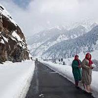 Paradise at Himachal Tour