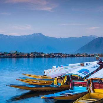 Splendor of Kashmir Tour
